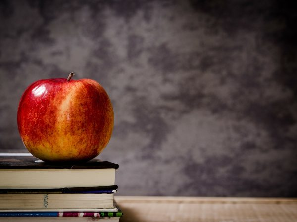 An apple on books in front of a blackboard is used as an image in this blog about a teacher interested in becoming a freelance copywriter