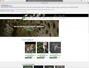 Screenshot of The Wildlife Studio website home page before Caroline Gibson's copy