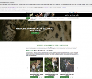 Screenshot of The Wildlife Studio website after uploading freelance copywriter Caroline Gibson's words - still under copyright