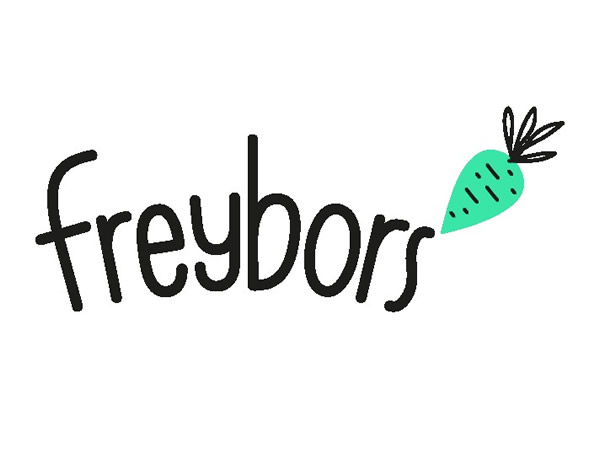 Visual of Freybors logo